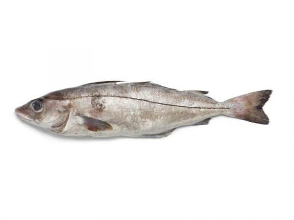 haddock fillets UK Delivery